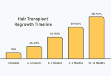 hairGrowth-timeline
